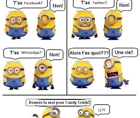 http://videos-mdr.com/wp-content/uploads/2013/09/image-marrante-geek-les-minions-reseaux-sociaux-493x415.jpg