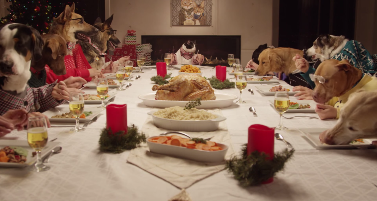 13 chiens et un chat font un repas de f te pour no l - Repas de noel a congeler ...