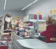 chats-font-courses-chez-netto-supermarche-drole-lolcat-memes
