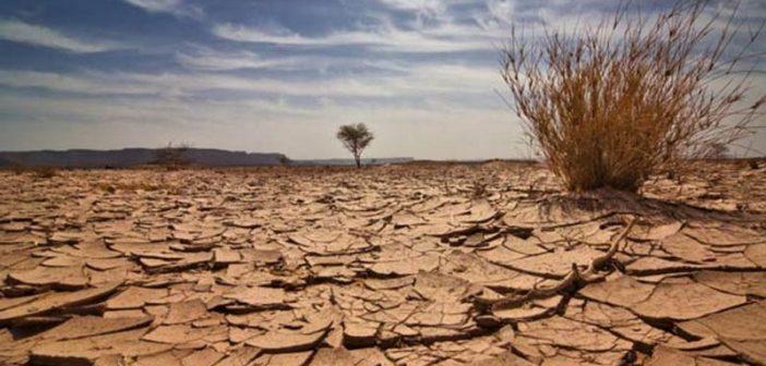 Selon-l-ONU-la-bataille-pour-le-climat-serait-deja-perdue