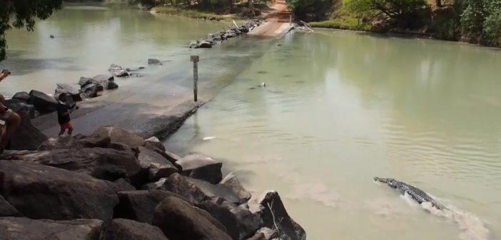 A la pèche, un homme se fait un frayeur en rencontrant… Un crocodile !
