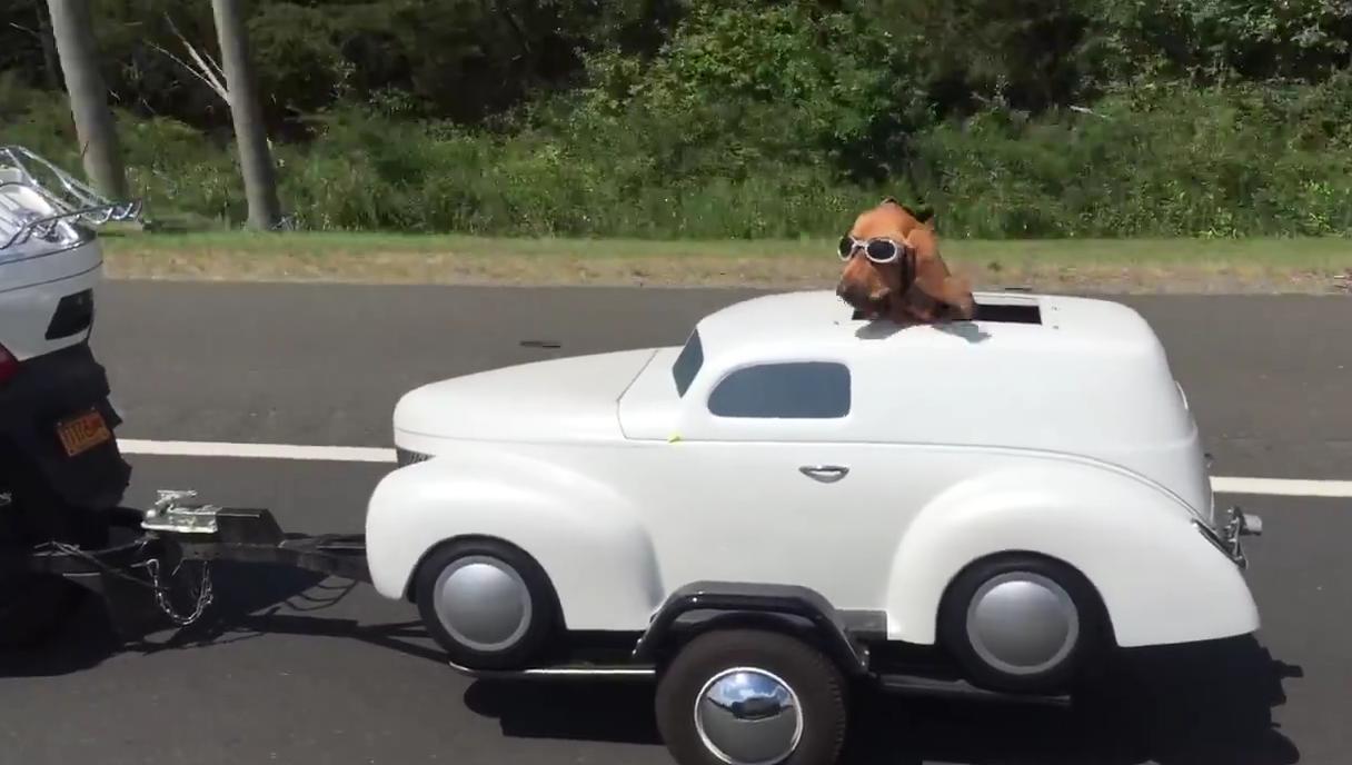 un chien qui a du swag il roule dans sa propre voiture tract e par la moto de son maitre. Black Bedroom Furniture Sets. Home Design Ideas