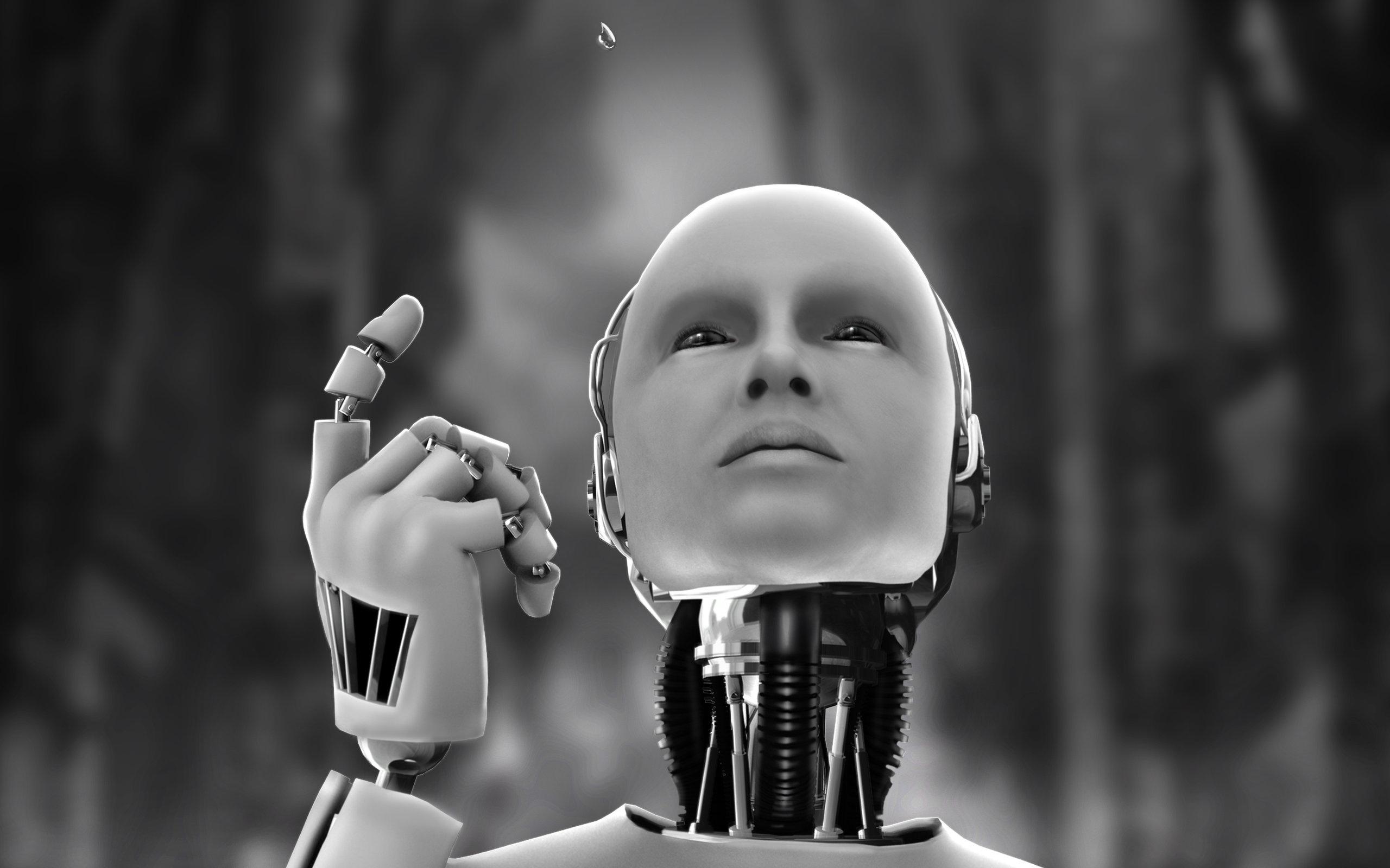 Apres-l-Arabie-Saoudite-c-est-le-Japon-qui-offre-la-nationalite- a-un-robot
