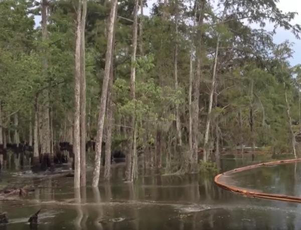 Un trou gigantesque dans l'eau avale tout autour de lui en Louisiane