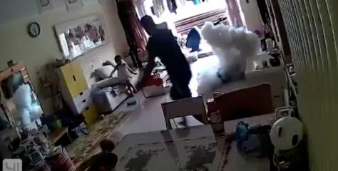 Une trottinette électrique explose subitement dans un appartement